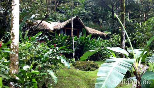 Costa Rica Lodge