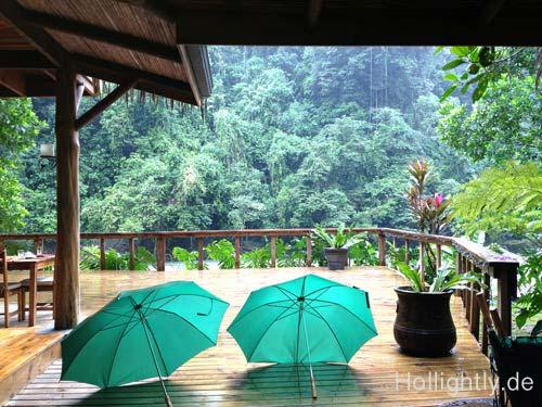 Regen im Dschungel Costa Ricas