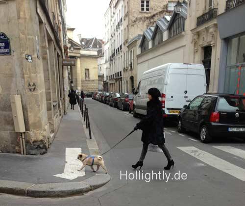 Pariser Frau mit Mops