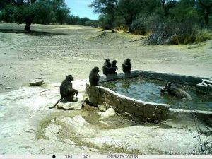 Hollightly-Gross-Okandjou-Namibia-1