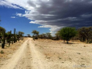 Hollightly-Gross-Okandjou-Namibia-12