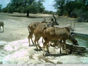 Hollightly-Gross-Okandjou-Namibia-14