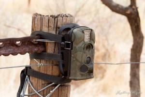 Hollightly-Gross-Okandjou-Namibia-15