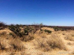 Hollightly-Gross-Okandjou-Namibia-5