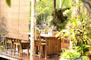 Bann Makok Restaurant