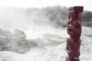 Hells Gate Neuseeland Schnitzerei