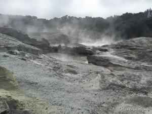 Hells Gate Neuseeland Landschaft
