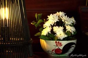 Blumen im Zeavola